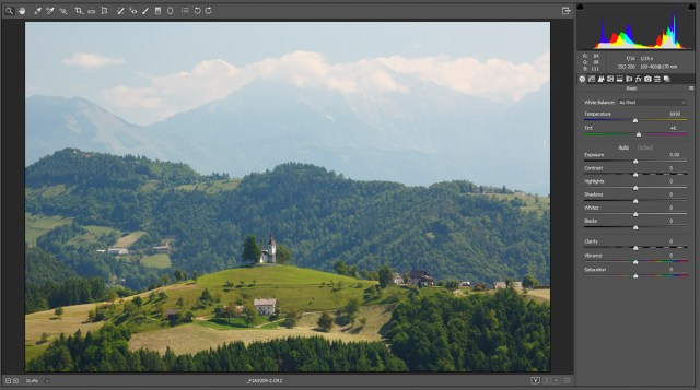 photo editing - RAW file when first opened in Adobe Camera RAW