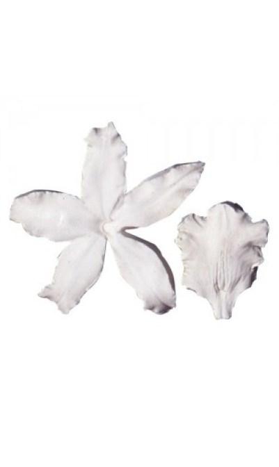 marcador-nervaduras-petalo-de-orquidea-squires-kitchen