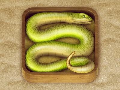 https://dribbble.com/shots/792957-Snake-iOS-Icon