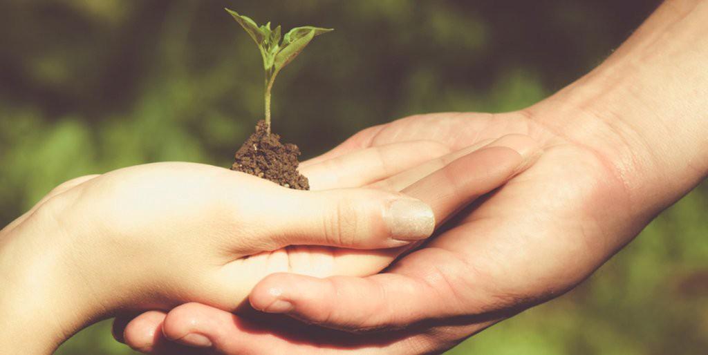 Awareness and sustainabilityAwareness and sustainability