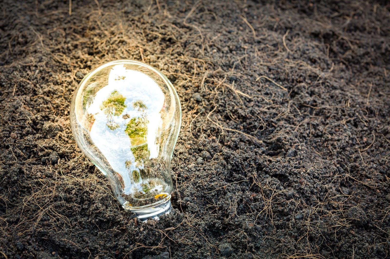 Uma lâmpada acesa deitada no chão de terra, ilustrando a economia circular