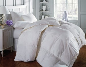 Hotel Comforters - Bed & Breakfast and Inn Comforters