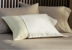 Feather and down pillow protector