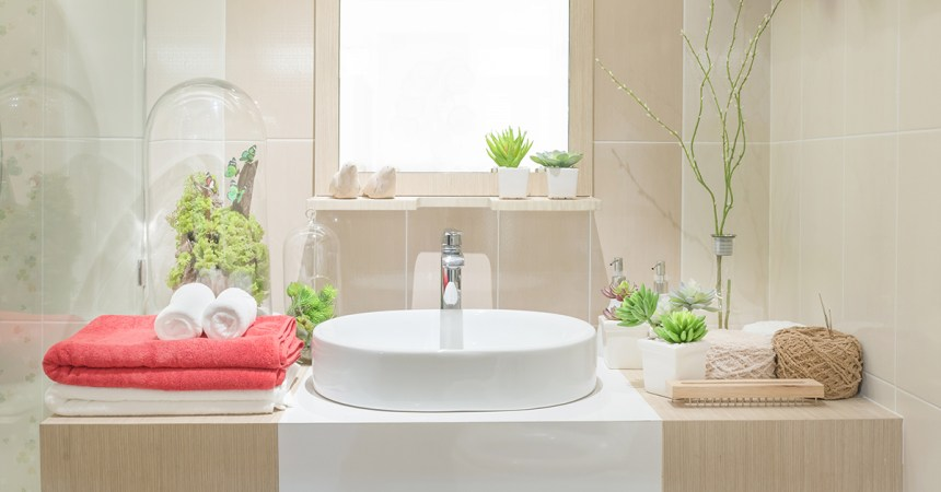 Beautiful bathroom with accessories, plants, and decorations