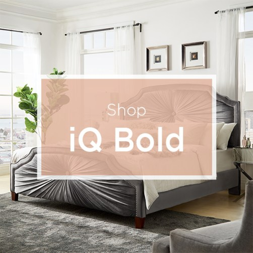 shop-iq-bold