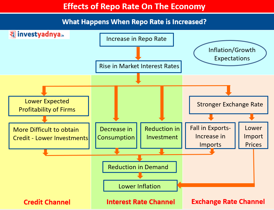 Effects of Repo Rate on the Economy