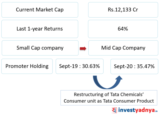 Tata chemicals market capitalization and promoter holding