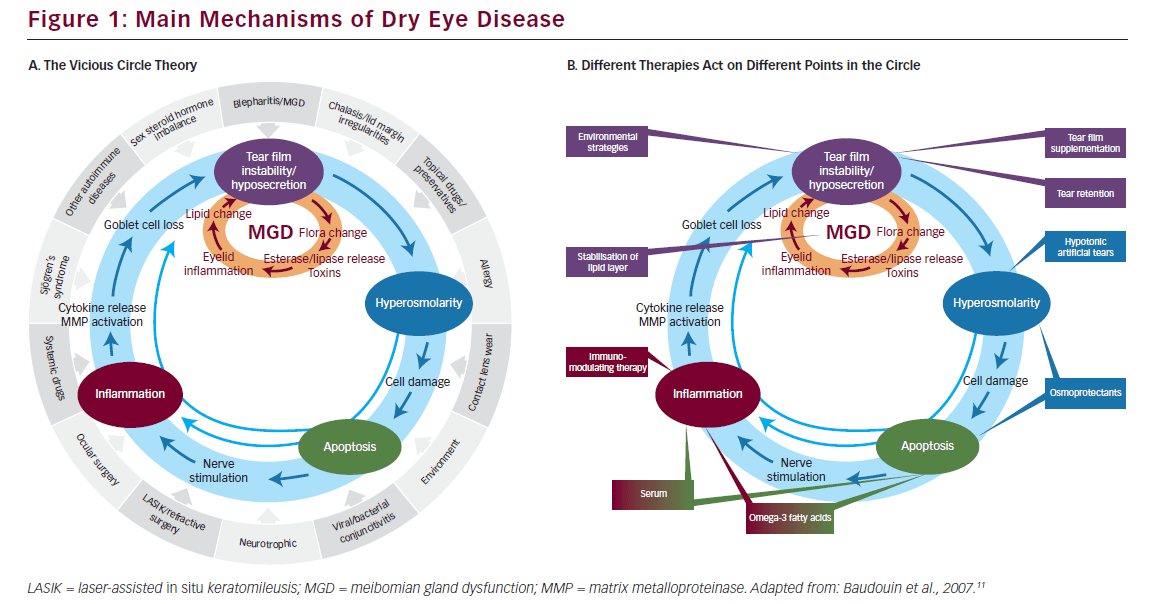 Figure_1_Main_Mechanisms_of_Dry_Eye_Disease