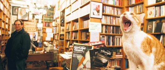 Simurg Kitabevi Photo Credit: http://www.sosyomat.com