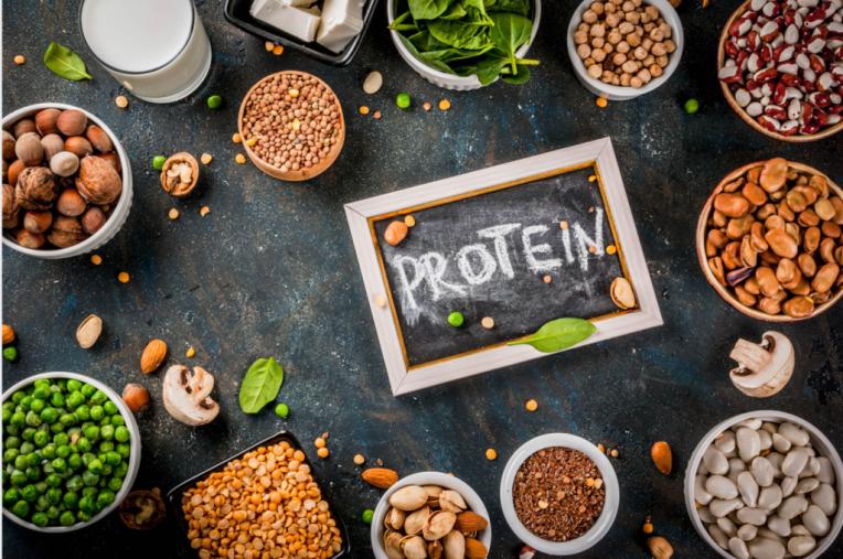 Kid's nutrition Protein