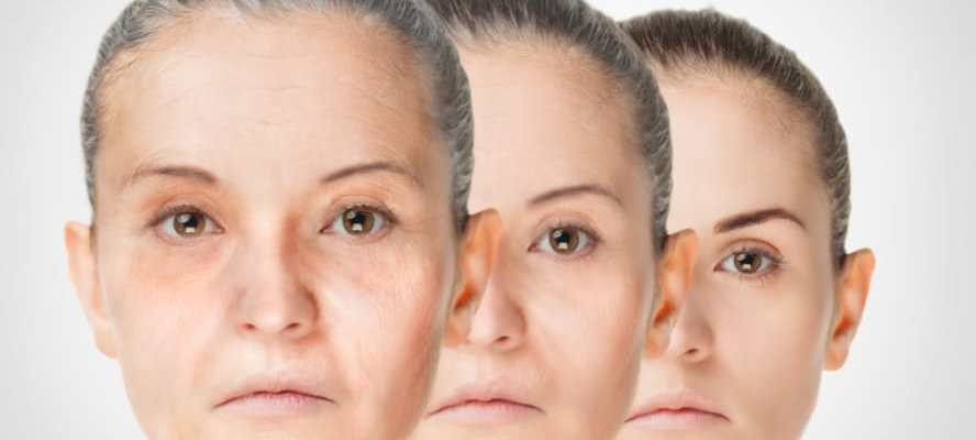 Natural collagen sources