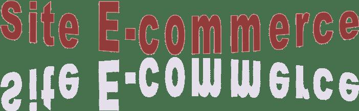 Definition Du Jour Site E Commerce Ecommerce Webmarketing Le