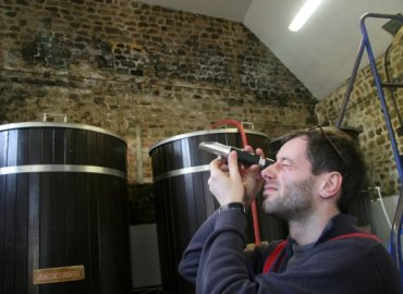 Jacaranda Visit Langham Brewery_0007