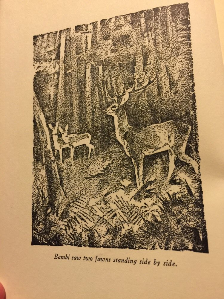 Illustration by Kurt Weise in 1929 edition of Felix Salten's Bambi.