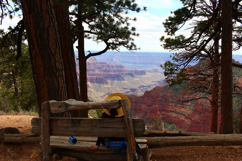 Taking in the view of the Grand Canyon from the North Rim. 2015.