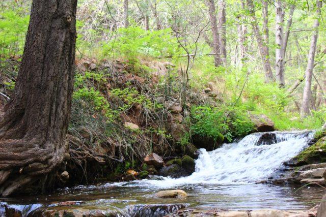 Horton Creek in Arizona. Photo by Bradley Van Sant.