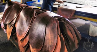 cuirs exotiques:shell cordovan horween