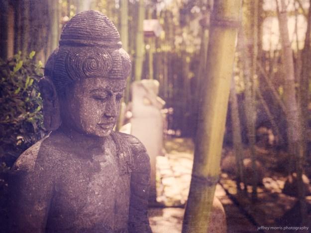 Buddha in the Sticks 1
