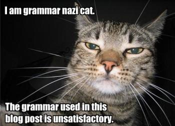GrammarNaziCat