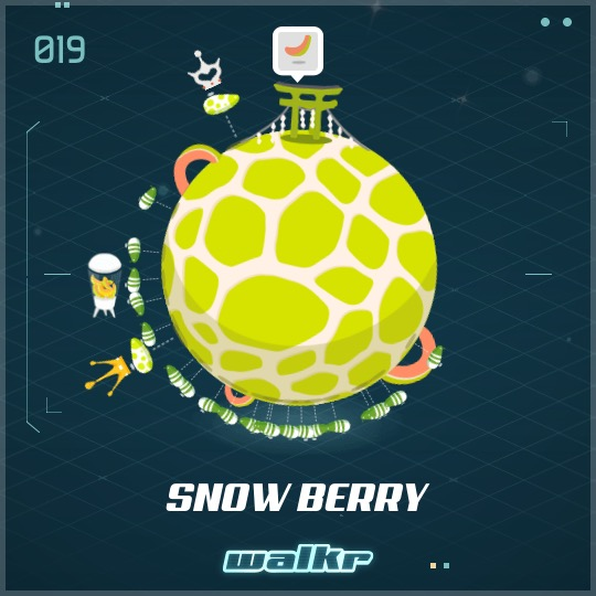 No.019 Snow Berry