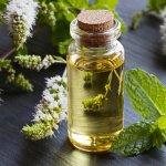 Top 4 Best Essential Oils