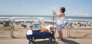 Dog Days at Huntington Beach, California