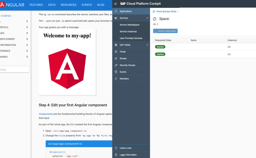 Deploy your Angular 7 app with Cloud Foundry on SAP Cloud Platform