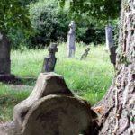 Régi sírok a mánfai temetőben.