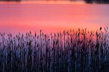 calm-lake-scene