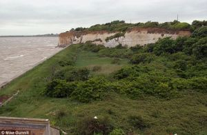 Tragic last voyage of a titan of the sea: 45ft whale dies after being washed up on Kent beach