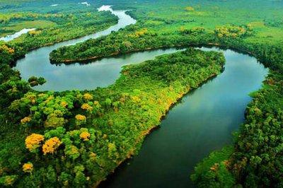 Quem mais sofreria com desmatamento na Amazônia seria o próprio agronegócio