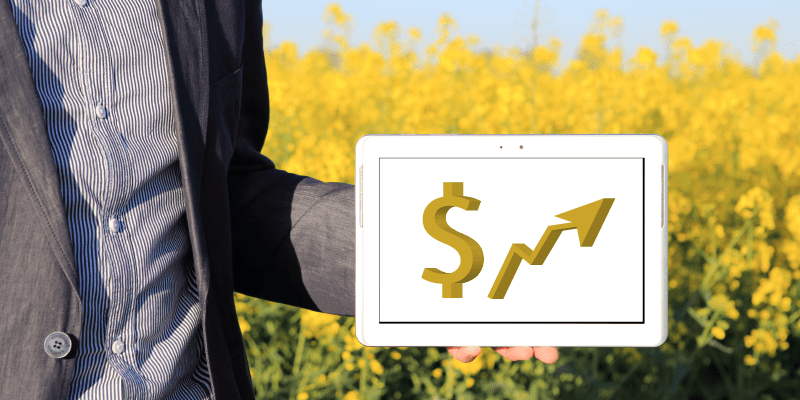 O segredo para ter sucesso no agro em 2019