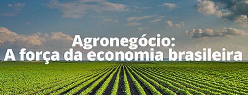 O agronegócio há 50 anos supera tudo, inclusive os governos.