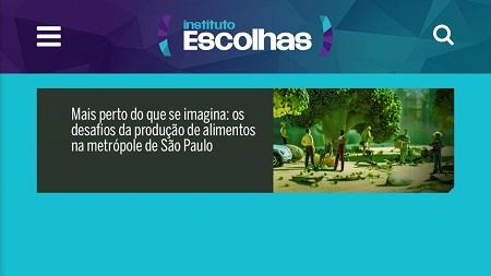 Estudo demonstra que poderíamos plantar verduras e legumes na Grande São Paulo para toda a sua população