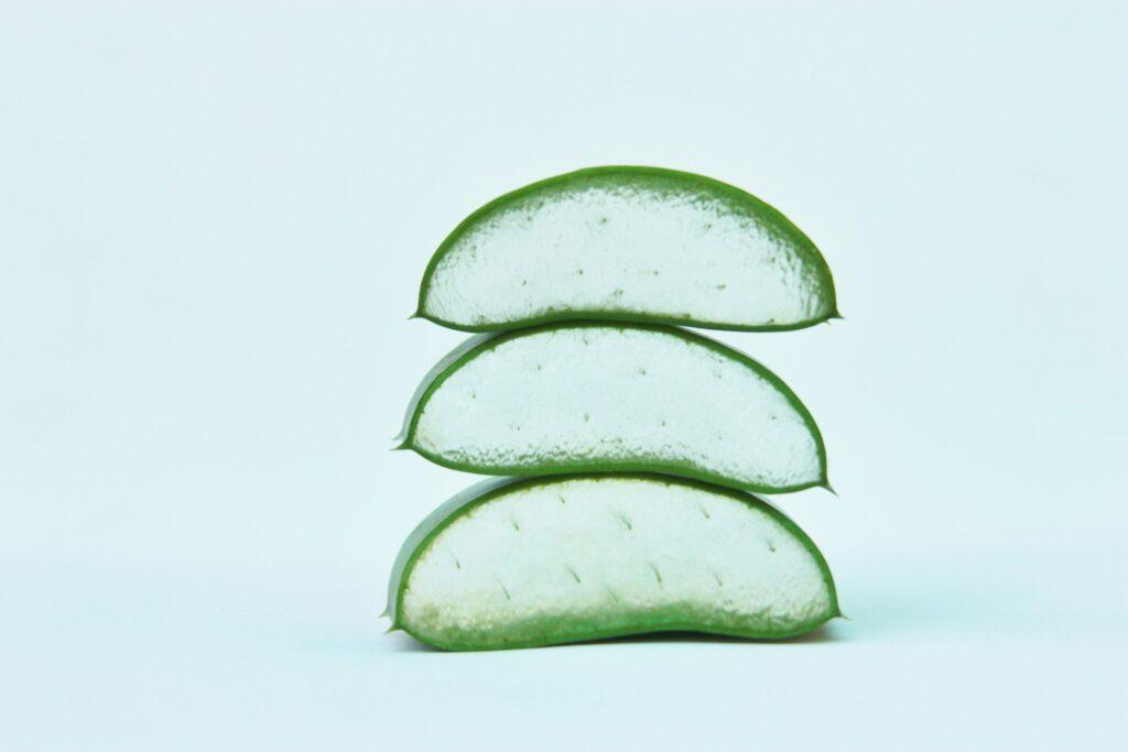 Aloe Vera Leaf Cut