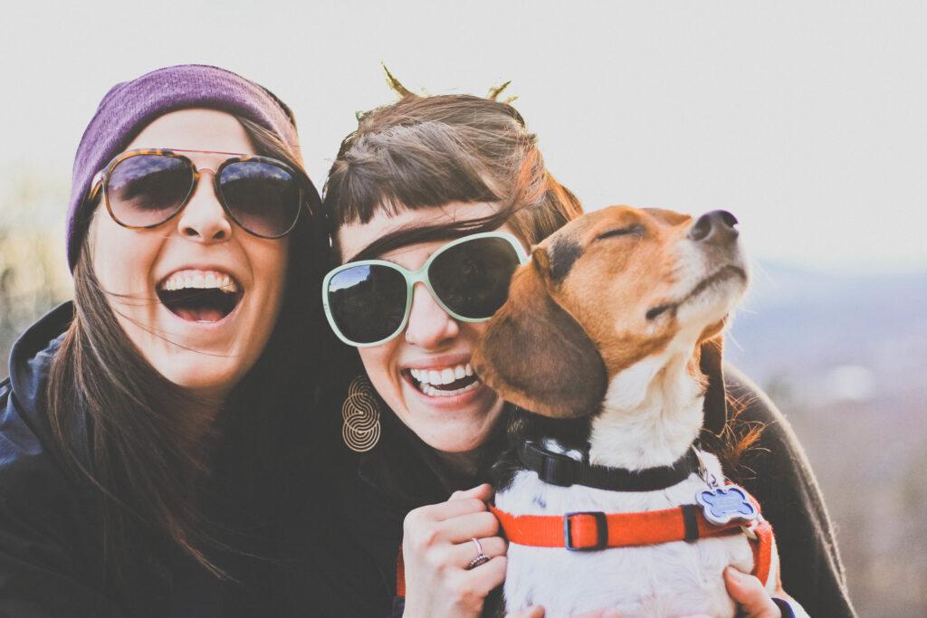Pet Friendly Joy