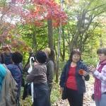 hokkaido autumn tour 15 187