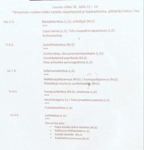 Helsinki / Uusimaa / Finland - 9/8/16