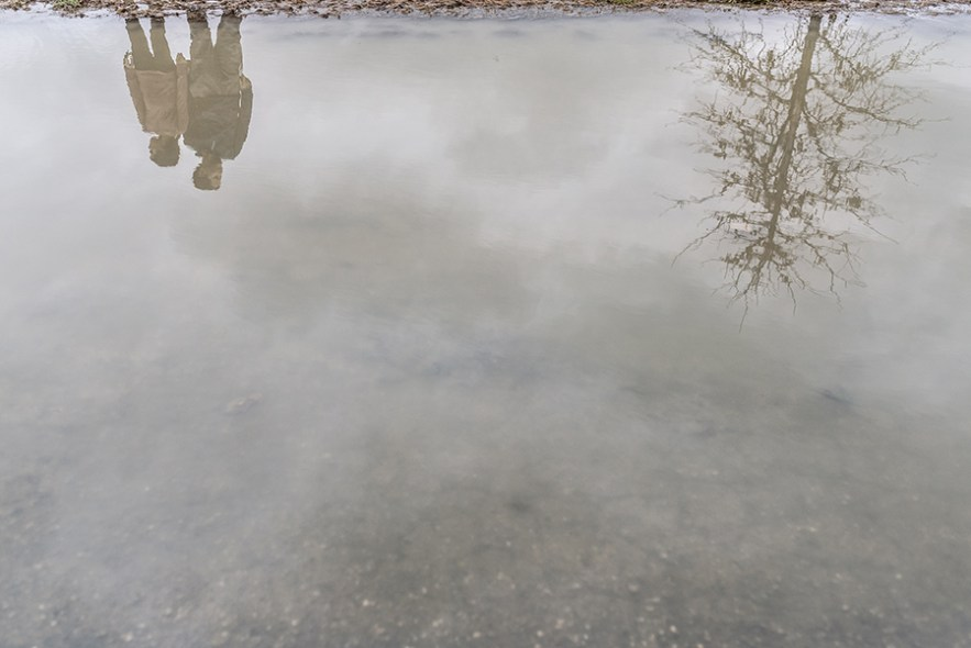 2020_3_16_puddle_reflection-5005