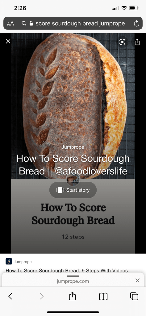 Screenshot of google results score sourdough