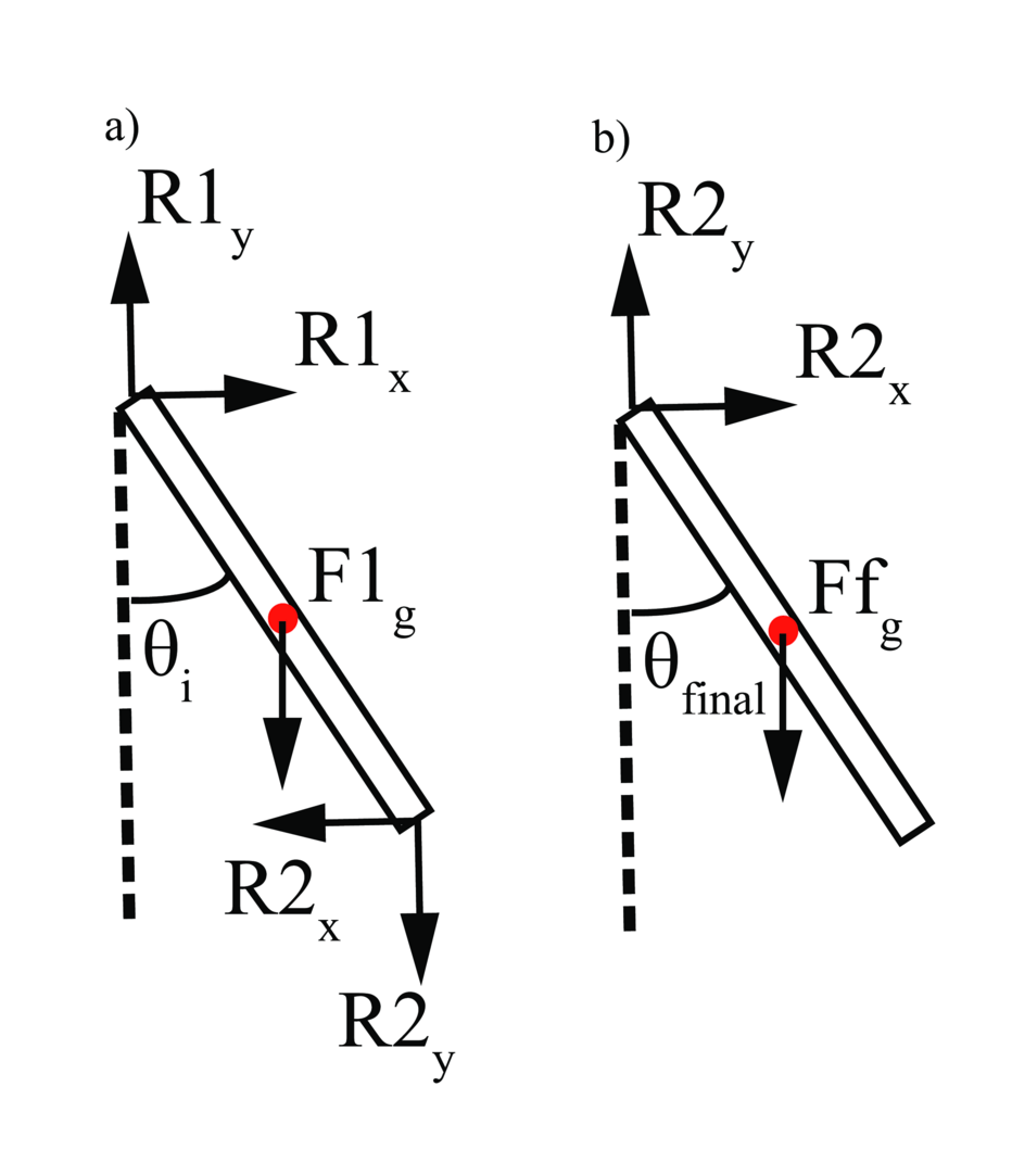 N link compound pendulum simulation sophies blog free body diagram of two example links in our compound pendulum pooptronica
