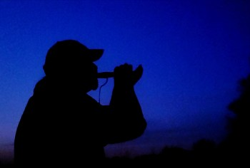 man calling a turkey with a blue midnight sky background