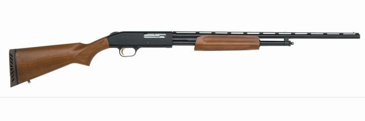 Mossberg 500 with wood stock