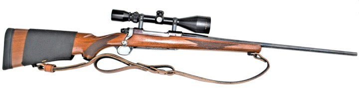 Ruger M77 rifle with wood stock, sling and Bushnell scope