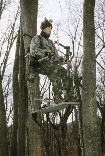 bow hunter in tree stand