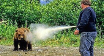 Man spraying a grizzly bear with pepper spray