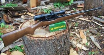Ruger .22 rifle with .22 subsonic ammunition for I-1639