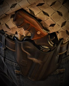 Galco holster and Smith and Wesson .357