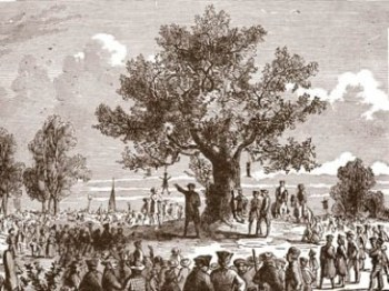 line drawing of the Liberty Tree referring to the protests in Hong Kong