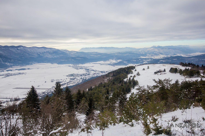Slivnica v snegu